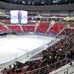 Купить билеты на Олимпиаду в Сочи в сети интернет